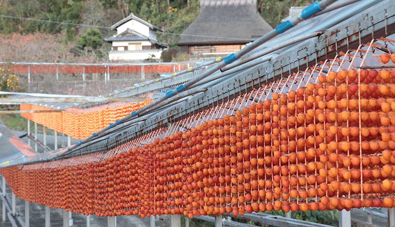四郷串柿の里 | 宝来山神社